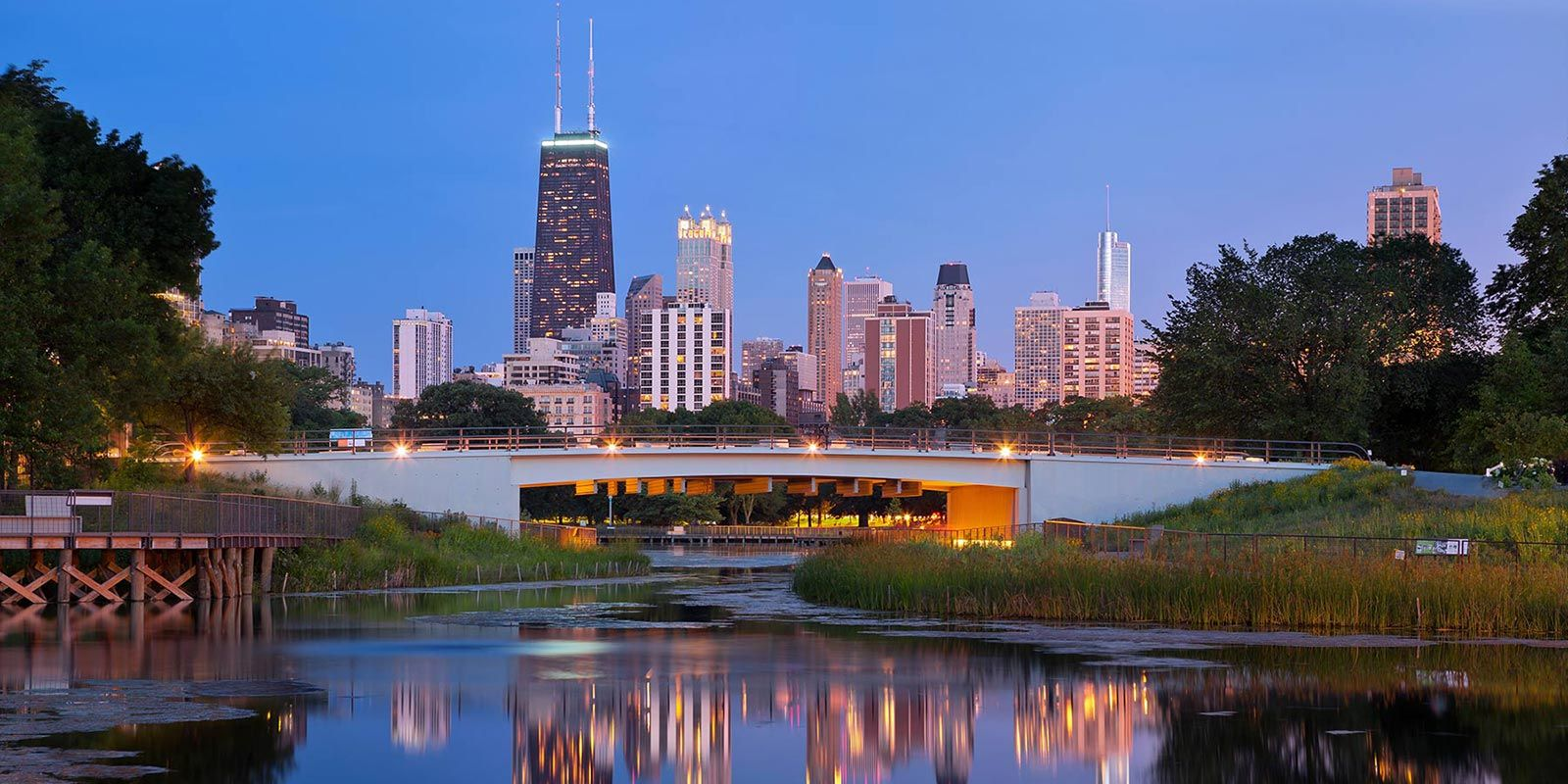 View from Lincoln Park Lagoon